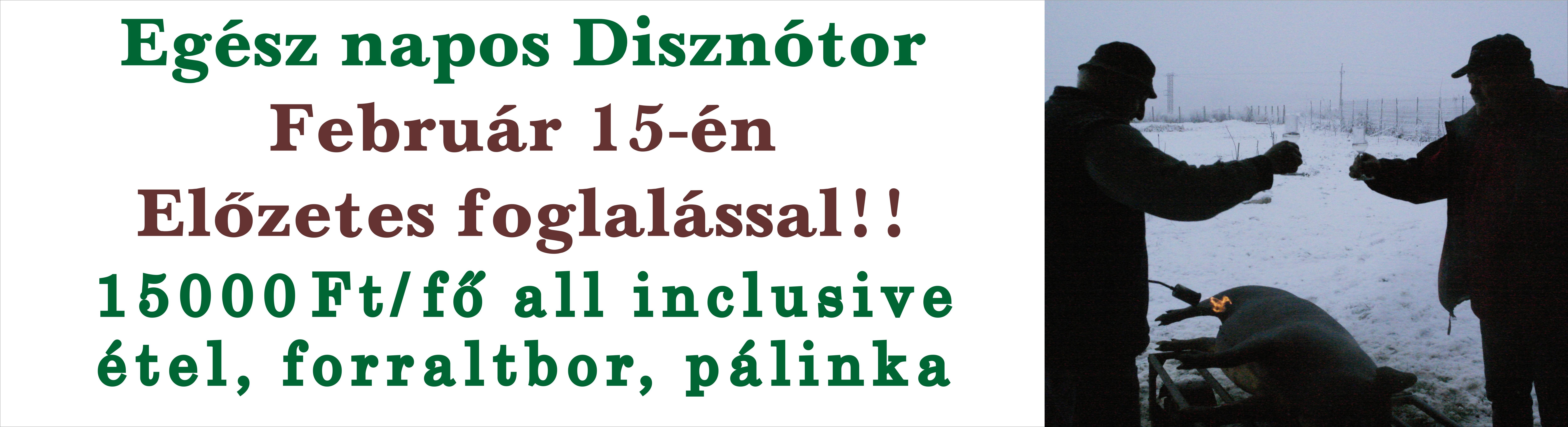 http://apalinka.hu/wp-content/uploads/2020/01/diszno.jpg